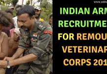 Remount Veterinary Corps